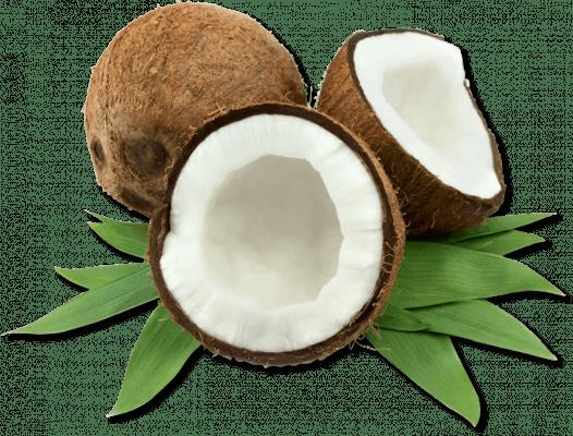 06 Organic Cocos Nucifera Coconut Oil 1