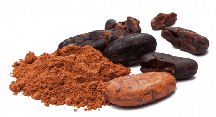 09 Organic Theobroma Cacao Cocoa Seed Butter