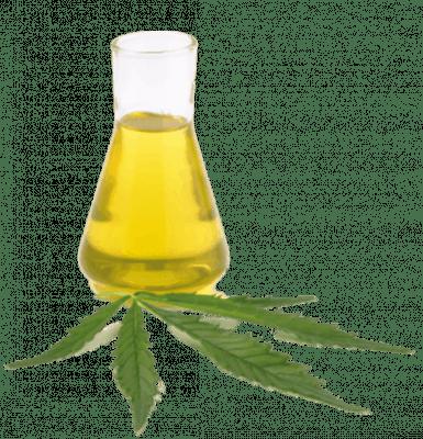 12 Cannabis Sativa Extract