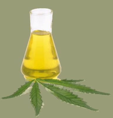 12 Cannabis Sativa Extract 385x400 1 1