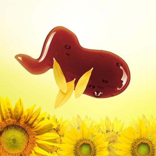 Organic Sunflower Lecithin 1 400x400 1